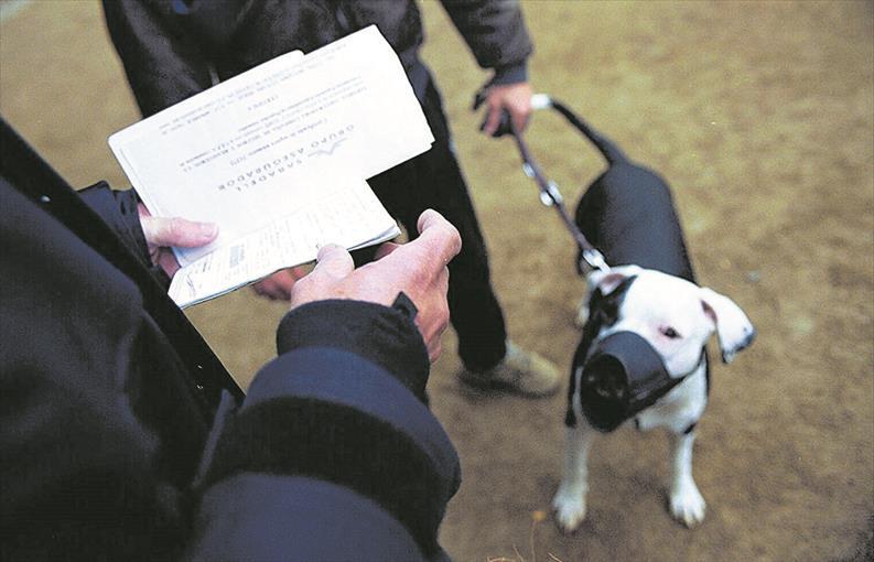 Licencia de animales peligrosos en Castellón